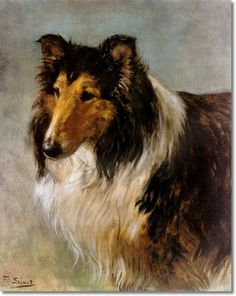 collie painting   Sinet - Collie - Seedley Sterling by F. Sinet   Painting