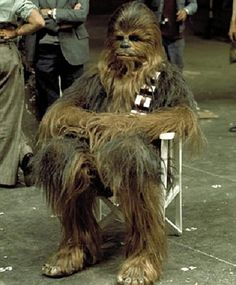 Chewy - The Sitting Carpet