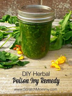 Need a natural remedy for poison ivy? This herbal DIY poison ivy remedy contains healing weeds like jewelweed and plaintain, along with essential oils. remedies baking soda remedies diy home remedies skin care remedies sore throat remedies treats Natural Health Remedies, Natural Cures, Natural Healing, Herbal Remedies, Natural Treatments, Natural Foods, Natural Oil, Holistic Healing, Cold Remedies