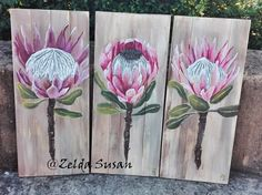 New wood texture illustration canvases 34 Ideas Flower Painting Canvas, Diy Painting, Canvas Art, Protea Art, Protea Flower, Painting Recipe, Painting On Pallet Wood, Flower Coloring Pages, Texture Painting