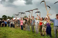 Why every permaculturist should own a scythe   Permaculture magazine