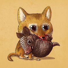 Coyote & Armadillo / Predator & Prey by Alex Solis Cute Animal Memes, Cute Animal Videos, Cute Animal Drawings, Cute Drawings, Predator, Cute Baby Animals, Animals And Pets, Coyote Drawing, Alex Solis