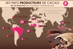 La récolte du cacao   Chocolaterie Monbana