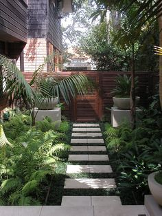 A well manicured side yard helps to frame your home and prefaces the interior and family inside, providing an initial welcome. A well thought out and organised side yard design and landscaping… Modern Front Yard, Front Yard Design, Small Gardens, Outdoor Gardens, Courtyard Gardens, Design Jardin, Modern Garden Design, Tropical Garden Design, Tropical Plants