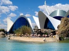 Wildlife in Valencia - Oceanografic