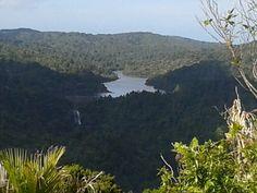 Looking down from Mt Pukematekeo...