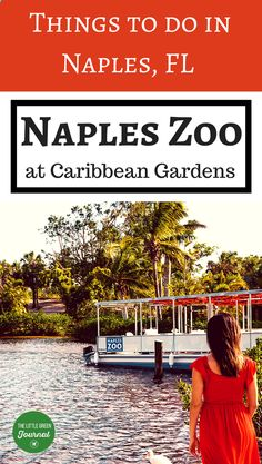 A must see in Naples, #Florida. Things to do in Naples for kids. The zoo has a giraffe feeding, boat ride, and more!
