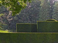 Bradenham Hall, Norfolk Yew hedges at Bradenham Hall, Norfolk Formal Garden Design, Garden Landscape Design, Garden Landscaping, Garden Hedges, Topiary Garden, Green Architecture, Landscape Architecture, Formal Gardens, Outdoor Gardens