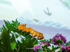 The home adventures of the Golden Origami: Origami Animals, Origami Art, Plants, Kunst, Plant, Planets