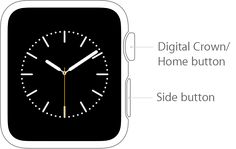 Learn how to use the Digital Crown, side button, and gestures. Iphone Watch, Being Used, Apple Watch, Clock, Button, Digital, Watch, Clocks, Buttons