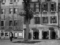 #venice #venezia #ghetto #italy #italia #ig_venice #ig_italy #jews #loves_venezia #blackandwhite #blackandwhitephotography #street #streetphotography #streetstyle #cityscape #kosher #35mm #pentax #travel #explore #culture #yeshiva #instavenice #stunning #amazing #ig_worldclub #ig_veneto #ig_venezia #ig_travel #streetlife_mag by nicola_fortunati