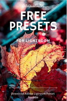Free presets for Adobe Lightroom Classic CC. Best Photo Background, Love Background Images, Photoshop Photography, Creative Photography, Inspiring Photography, Flash Photography, Photography Tutorials, Beauty Photography, Digital Photography