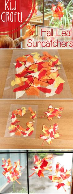 \    I love the fall! The Florida heat is almost tolerable and we can go outdoors again.  I also love fall crafts.  Please don't tell anyo...