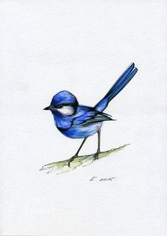Bird, blue, Nature, Illustration,Watercolor Original Painting Art, Quick sketch #IllustrationArt  Natalia Komisarova   NatalieStorePainting     You can also find me on:    EBAY: http://www.ebay.com/usr/natalie_komisarova.art    ETSY: https://www.etsy.com/shop/NatalieStorePainting    FACEBOOK: https://www.facebook.com/komisarova.art    #NataliePaintings #Natalie #Artist #Illustration  #Bird