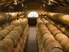 Oak Barrels in Wine Cellar at Groth Winery in Napa Valley ...