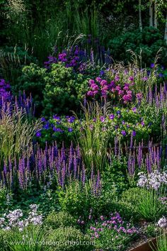 shades of purple...                                                       …