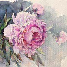 Розовые пионы. #рисую_все_что_вижу #art #artwork #paint #painting #draw #drawing…