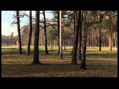 Dve tváre Osvienčimu Časť 2 - YouTube It Cast, World, Youtube, The World, Youtubers, Youtube Movies