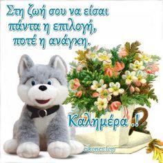 Αποκλειστικές εικόνες με λόγια για καλημέρα.! - eikones top Good Morning Greetings, Teddy Bear, Animals, Celebrities, Messages, Animales, Celebs, Animaux, Teddy Bears