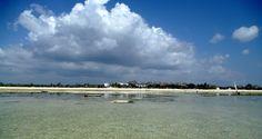 Watamu beach Kenya, Africa, Clouds, Beach, Water, Outdoor, Gripe Water, Outdoors, The Beach