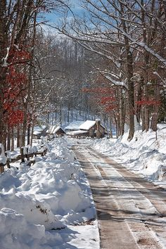 Twin Falls State Park Photograph - Winter Lane by Mary Almond Winter Forest, Winter Szenen, Foggy Forest, Winter Magic, Winter Time, Winter Christmas, Winter Road, Winter House, Winter Travel