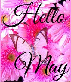 Hello my dear Ladies ,Wishing you a bright ,colorful warm month,Spring has arrivedThankyou for always pinning