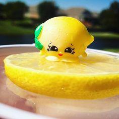 Image result for pippa lemon