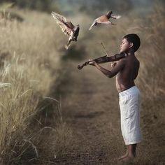 ♫♪ MUSIC ♪♫ freedom bird boy nature