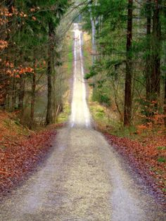 radivs: Down and Up Again by Mittelfranke One Point Perspective, What A Beautiful World, Enjoy It, Techno, Paths, The Good Place, Country Roads, Enchanted, Amazing