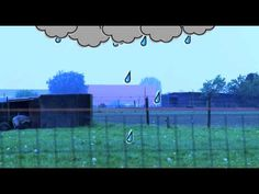 ▶ Waterkringloop - YouTube