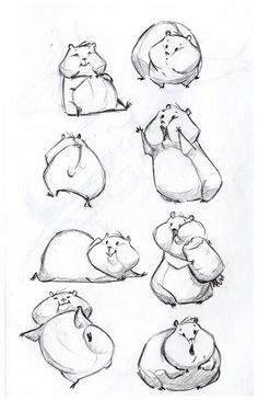 Drawing Animals in the Zoo - Drawing On Demand Cute hamster sketches. Horse Sketch, Sketch Art, Drawing Sketches, Drawing Ideas, Drawing Process, Doodle Drawings, Animal Sketches, Animal Drawings, Drawing Animals