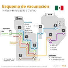 """Esquema de vacunación mexicano 💉 Utilizando el método de loci (utiliza la memoria espacial para recordar cosas) hemos recreado el esquema de vacunación en forma de """"estaciones de metro"""" cada parada (circulo) representa una vacunación. El mapa se divide en dos islas de """"meses"""" y """"años"""" el número de estación corresponde a ej. """"2 meses"""" y respectivamente con cada una. #SpotlightMed #Vacunas #Esquema #Vacunación #Pediatría #México #Estudiante #Medicina Bar Chart, Instagram, Ss, Internet, Maps, Medicine, 9 Year Olds, Shape, Student"""