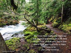 Love - 1 John 4:16