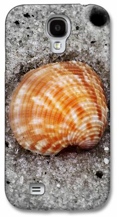 Shell in the sand Samsung Galaxy S4 Case / Samsung Galaxy S4 Cover for Sale by Laurie Pike