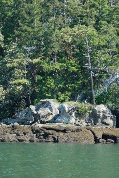 Sucia Island State Park is Washington's crown jewel and is one of the top boating destinations in the world.