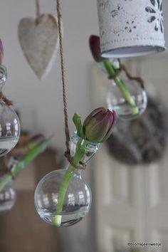 Bekijk de foto van Blomkjeenwenje met als titel tulp in flesje en andere inspirerende plaatjes op Welke.nl.