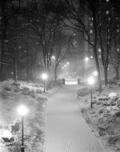 Night Storm Schurz Park New York Photographed with large format camera (film, large negative) and with a feeling of being in a fairyland. This was taken in Schurz Park on the upper east side - looking towards the west. Winter Szenen, I Love Winter, Winter Night, Winter Time, Winter Park, Beautiful World, Beautiful Places, I Love Snow, New York Photography