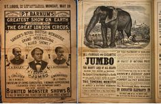 Michael J. Dixon.com: Jumbo - The Greatest Elephant in the World!