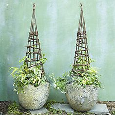 1. Paired Planters, Willow Cones + Black-Eyed Susan Vine  When it comes to planters, two is always better than one. Particularly when topped with willow cones and planted with bright Black-Eyed Susan Vines.
