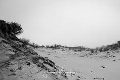 Black/White - Sand dunes in Holland
