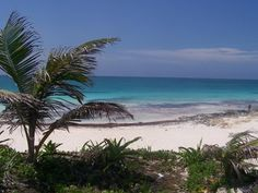 Playa Del Carmen  Cancun, Mexico