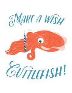 Seltzer Goods Cuttlefish Cards