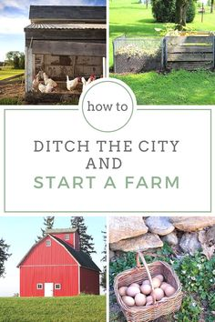 How to Ditch the City and Start a Farm - Prepping to survive after a major disaster is so much more than stockpiling supplies in the back closet of our apartment. If we ever face a SHTF scenario, we're going to need a different set of skills to survive. Skills like farming can increase your chances of keeping your family alive in the event of a disaster much more likely.
