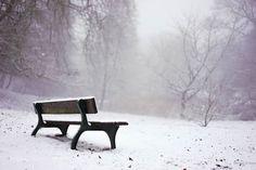 Winter by DorianoDiSalvo #nature #mothernature #travel #traveling #vacation #visiting #trip #holiday #tourism #tourist #photooftheday #amazing #picoftheday
