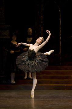 Nao Sakuma as Odile - Birmingham Royal Ballet. Photo: Bill Cooper