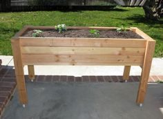 raised planter- I like this idea for smaller plants like herbs