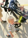 Tagalong -  A kid sized security handle for you and your child to keep track of each other when it's time to stretch those little legs. Available in several bright colors.