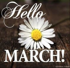 3 months till March and hopefully to being my goal weight! Seasons Months, Days And Months, Seasons Of The Year, Months In A Year, Spring Months, 1 Year, A Days March, Happy March, March Month