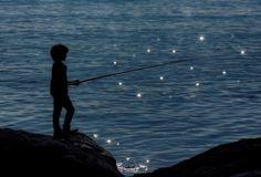 """⚡️ """"LOS MOMENTOS FAVORITOS DE @HACERFOTOS (31/1/2017)"""" https://twitter.com/i/moments/826299305363390464  (Pescando una estrella, #fotografia de Marco Bocelli)"""