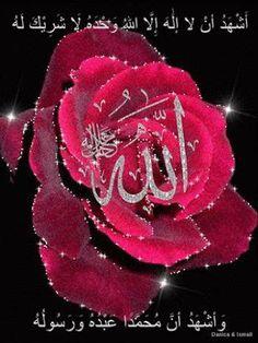 The most beautiful name( Allah. Quran Wallpaper, Islamic Wallpaper, Islamic Images, Islamic Pictures, Gift Animation, Images Jumma Mubarak, Rose Flower Wallpaper, Allah Names, Allah God